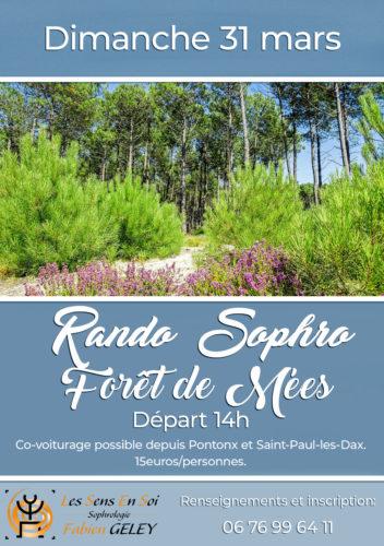 Rando Sophro en forêt de MEES